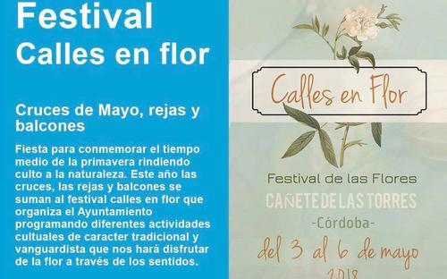 Festival en Flor