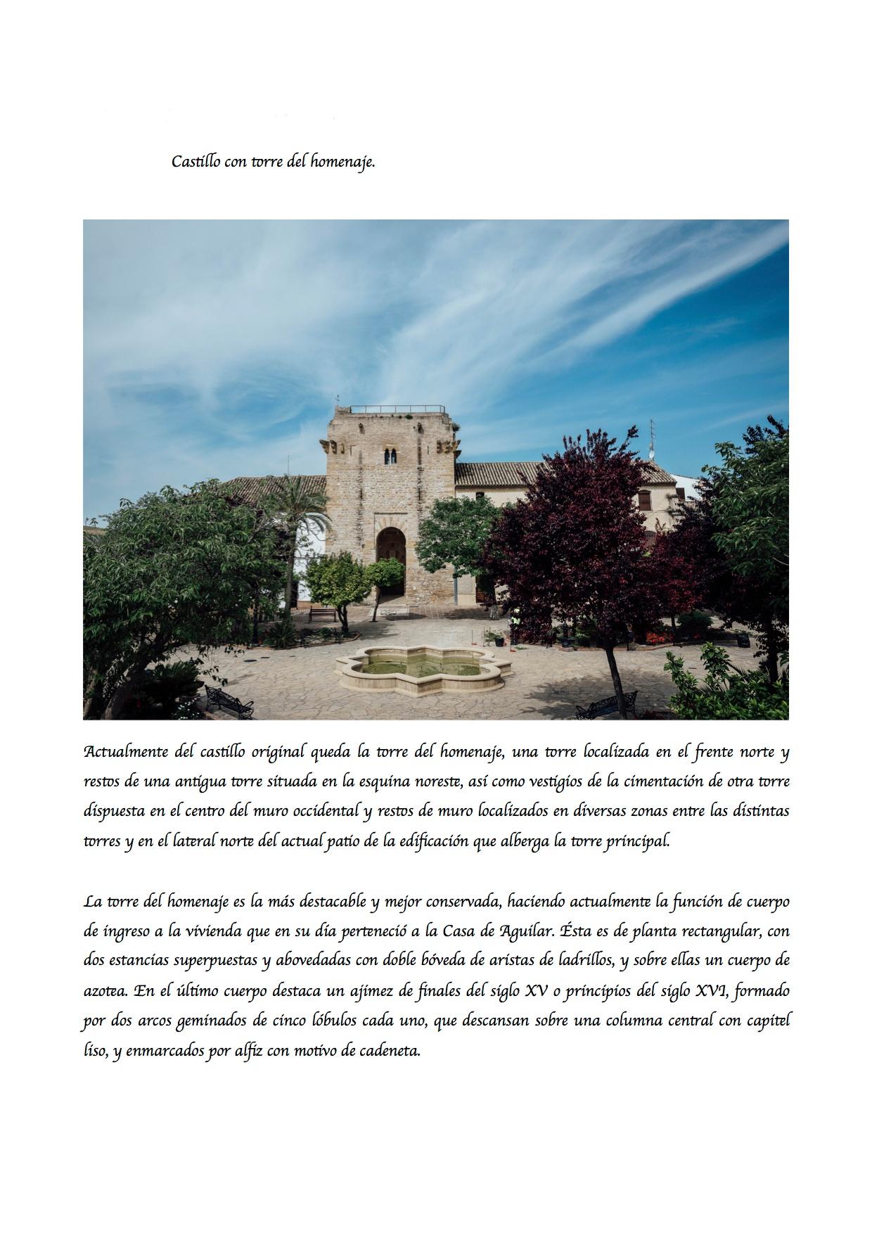 Castillo con torre del homenaje