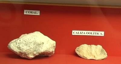 detalle piezas museo arqueologico
