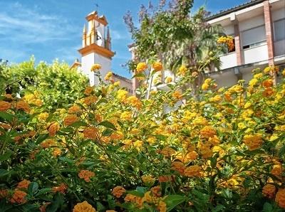 flores calle séneca