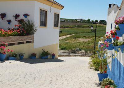 patio huerto del francés 4