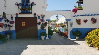 entrada barrio huerto del francés