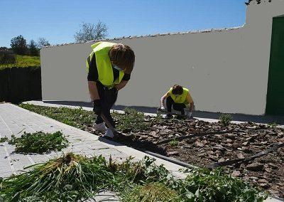 arreglo jardines 1