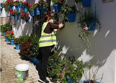 arreglo jardines 2