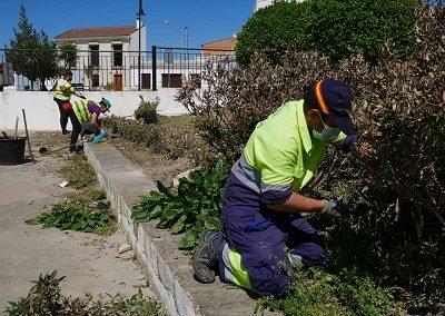 arreglo jardines 3