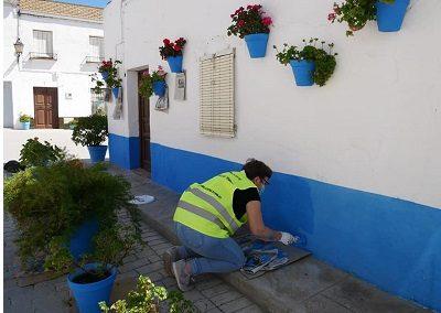 arreglo jardines 5